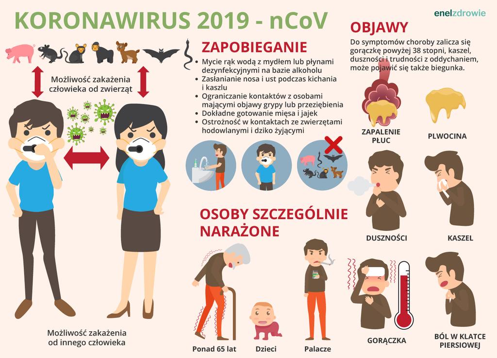 koronawirus_infografika.jpeg